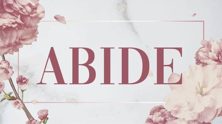 ABIDE 2020 logo image