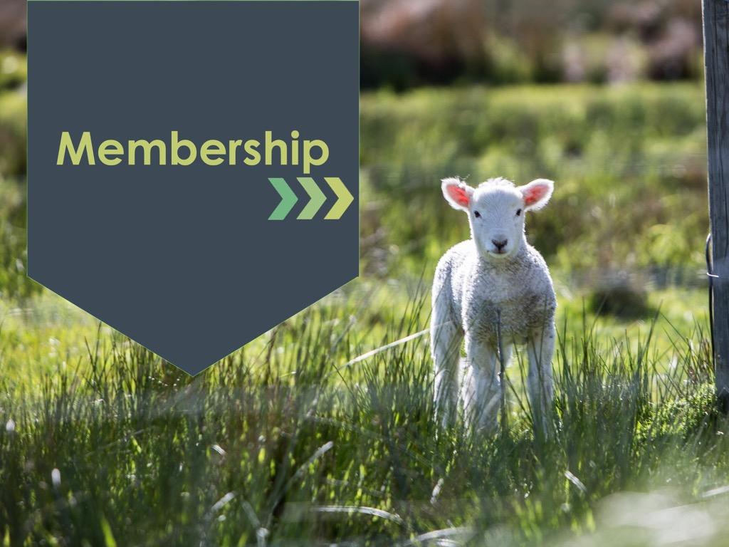 Membership main 2  1