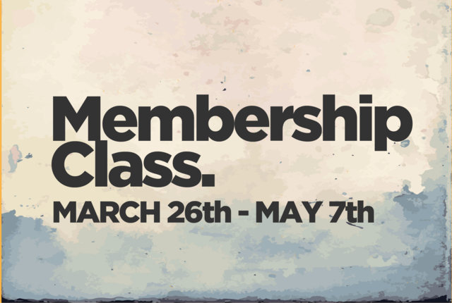 Sp17 membership