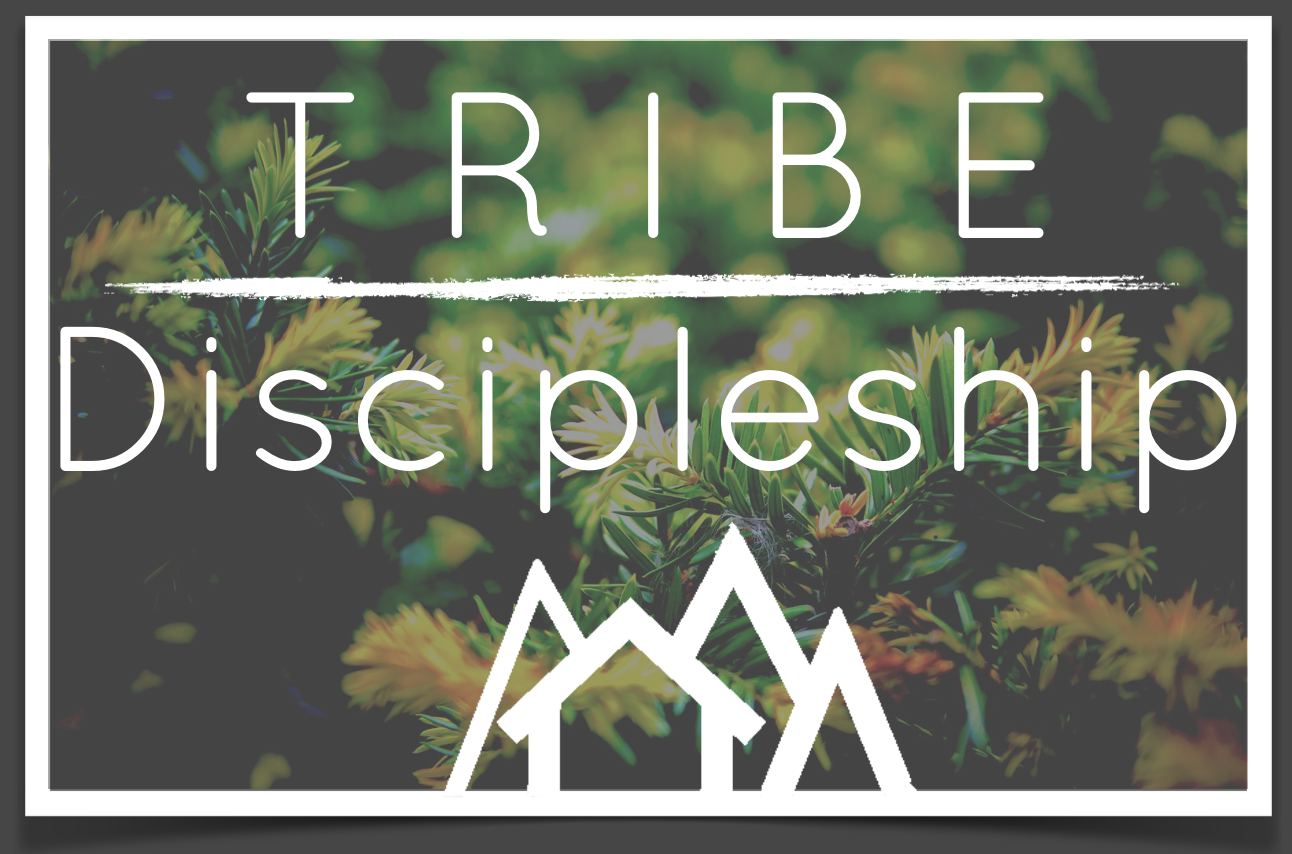 Tribe  discpleship
