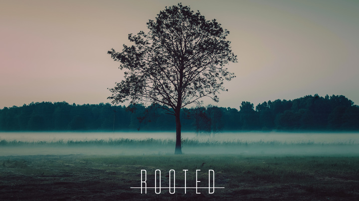 Rooted | Cypress logo image