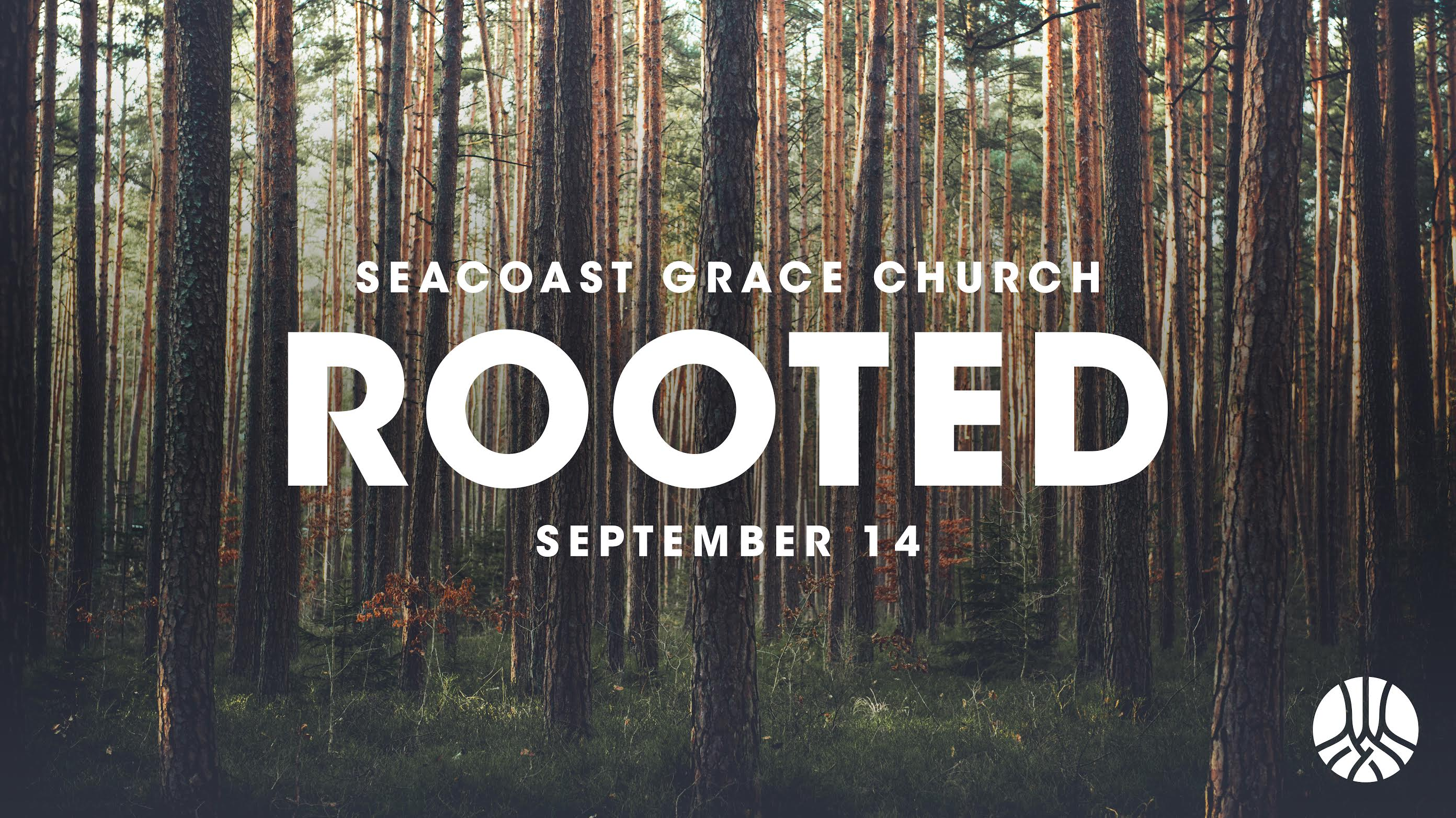 Rooted graphic