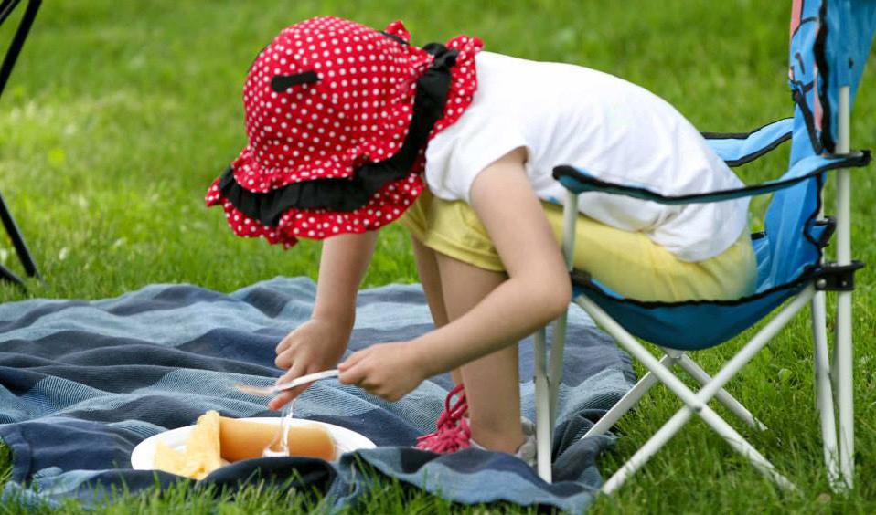 Slider picnic2014