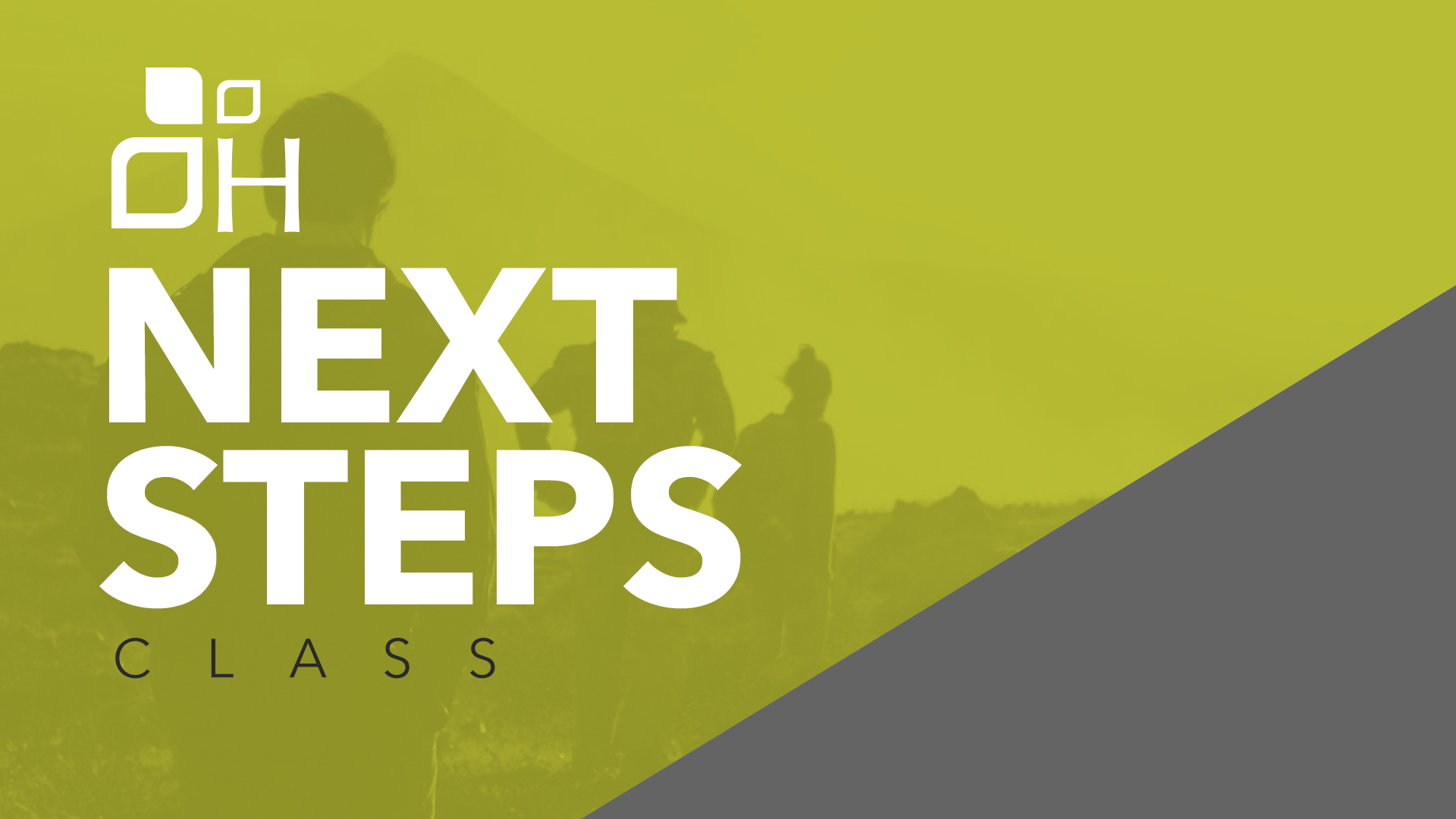 Next steps slide blank