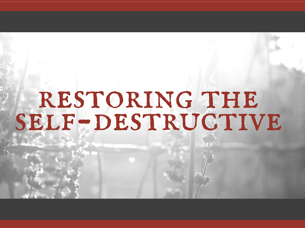 Restoring the self destructive regs