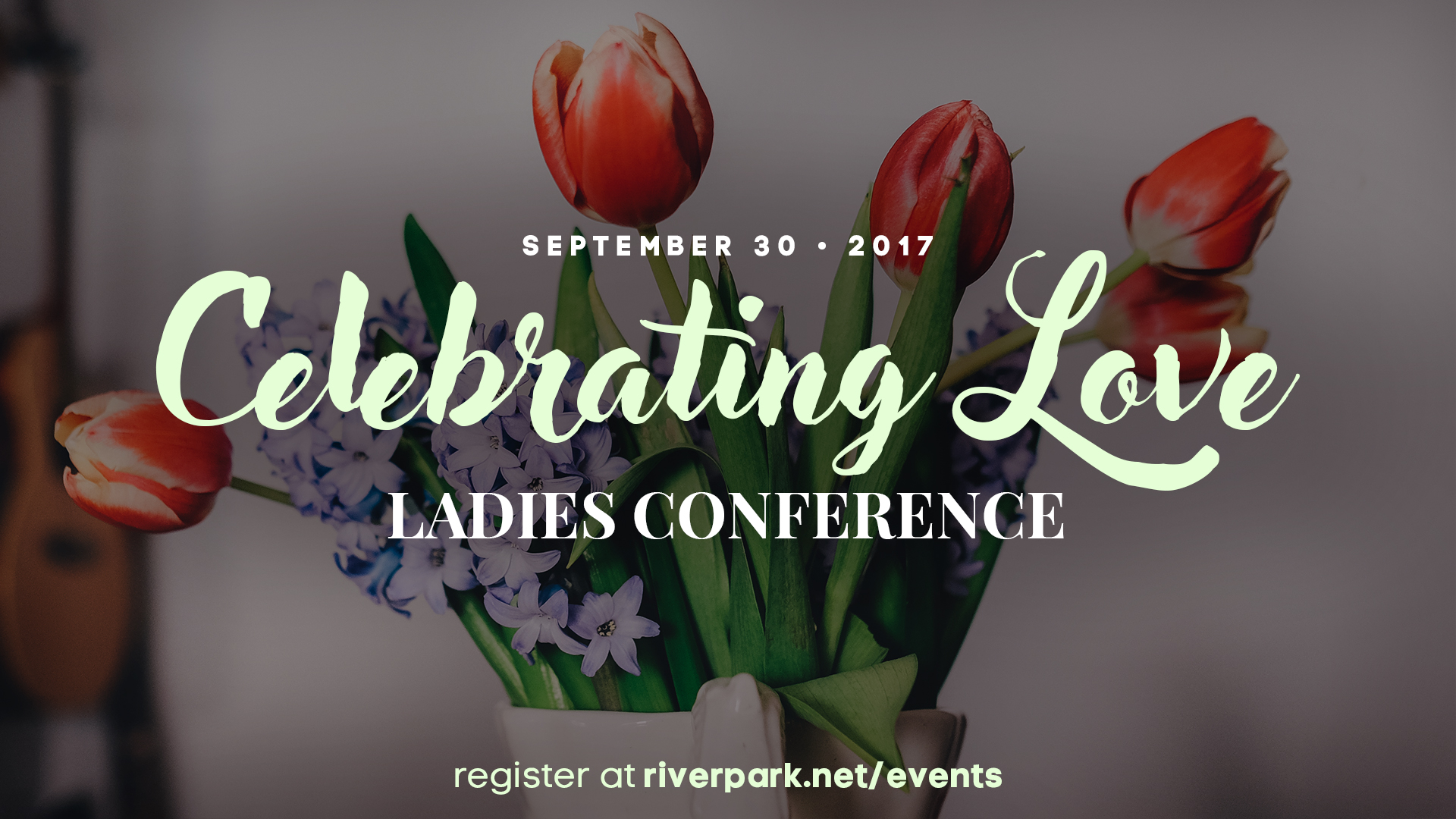 Womens conference 2017 graphic v3