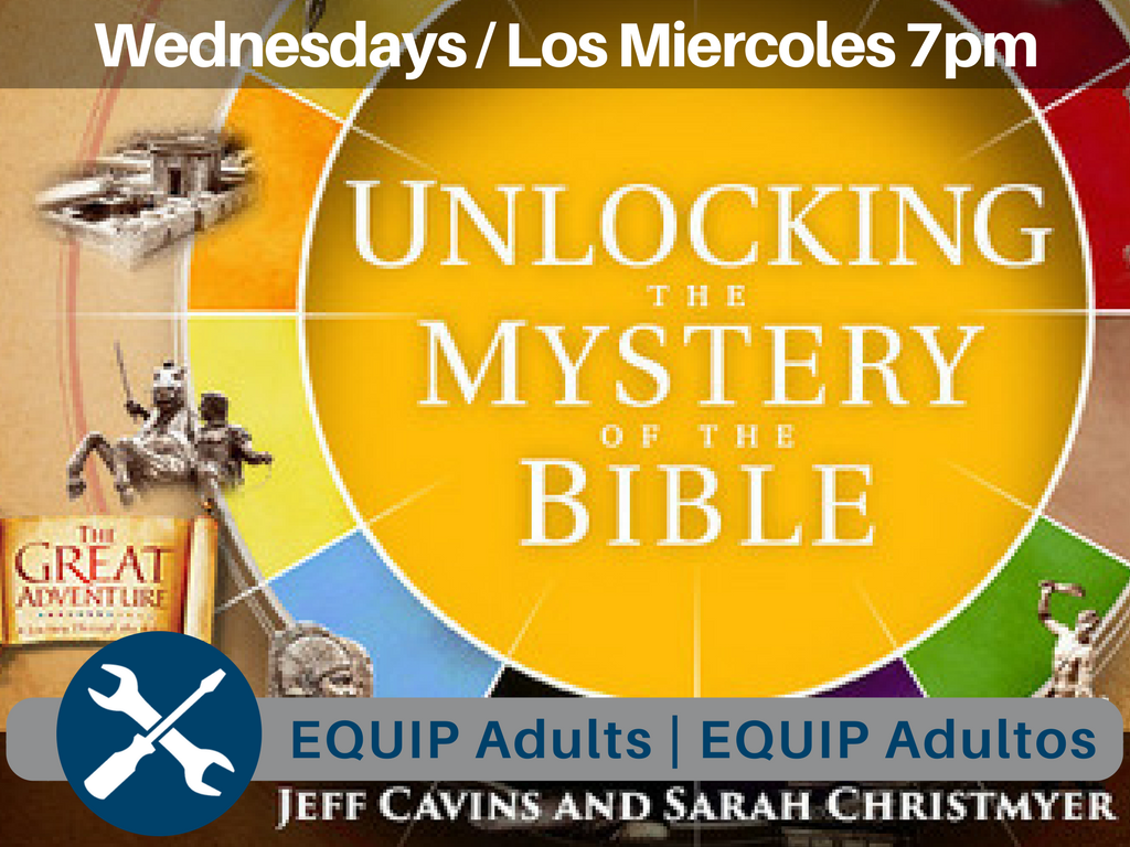 Equip adults   equip adultos unlocking bible