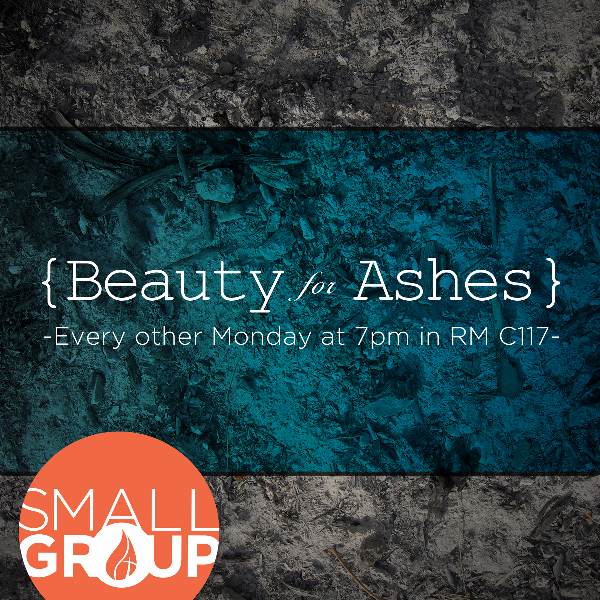 Beauty for ashes w logo