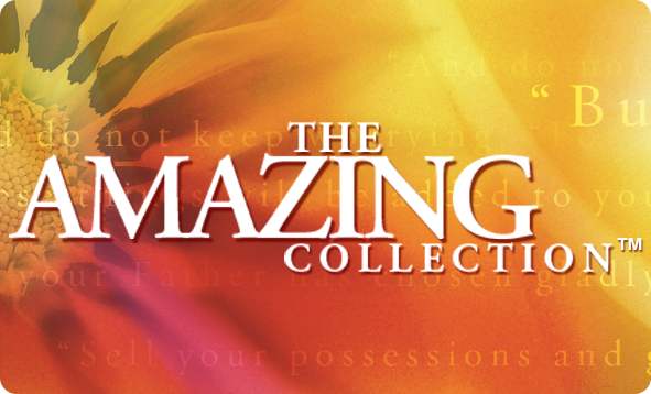 Theamazingcollection