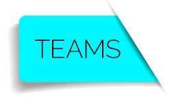 Web button teams