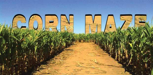 Corn maze web banner
