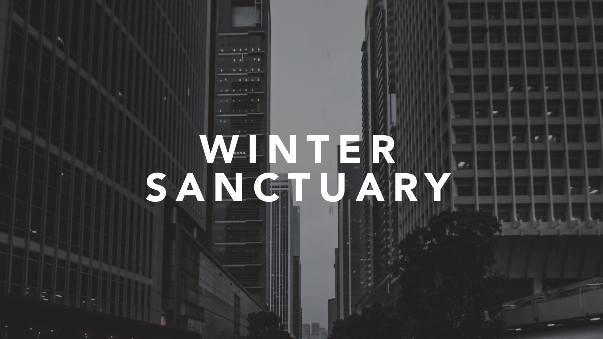Winter sanctuary slide