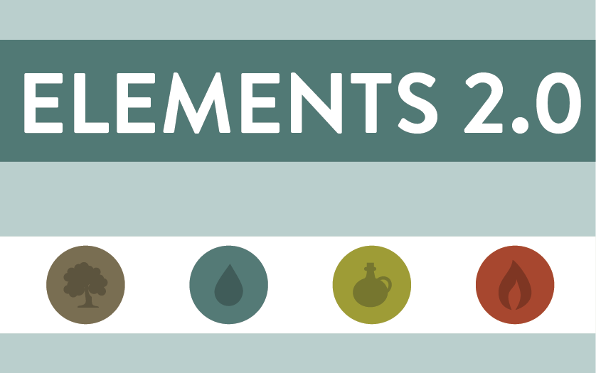 Element 2  web connect icon