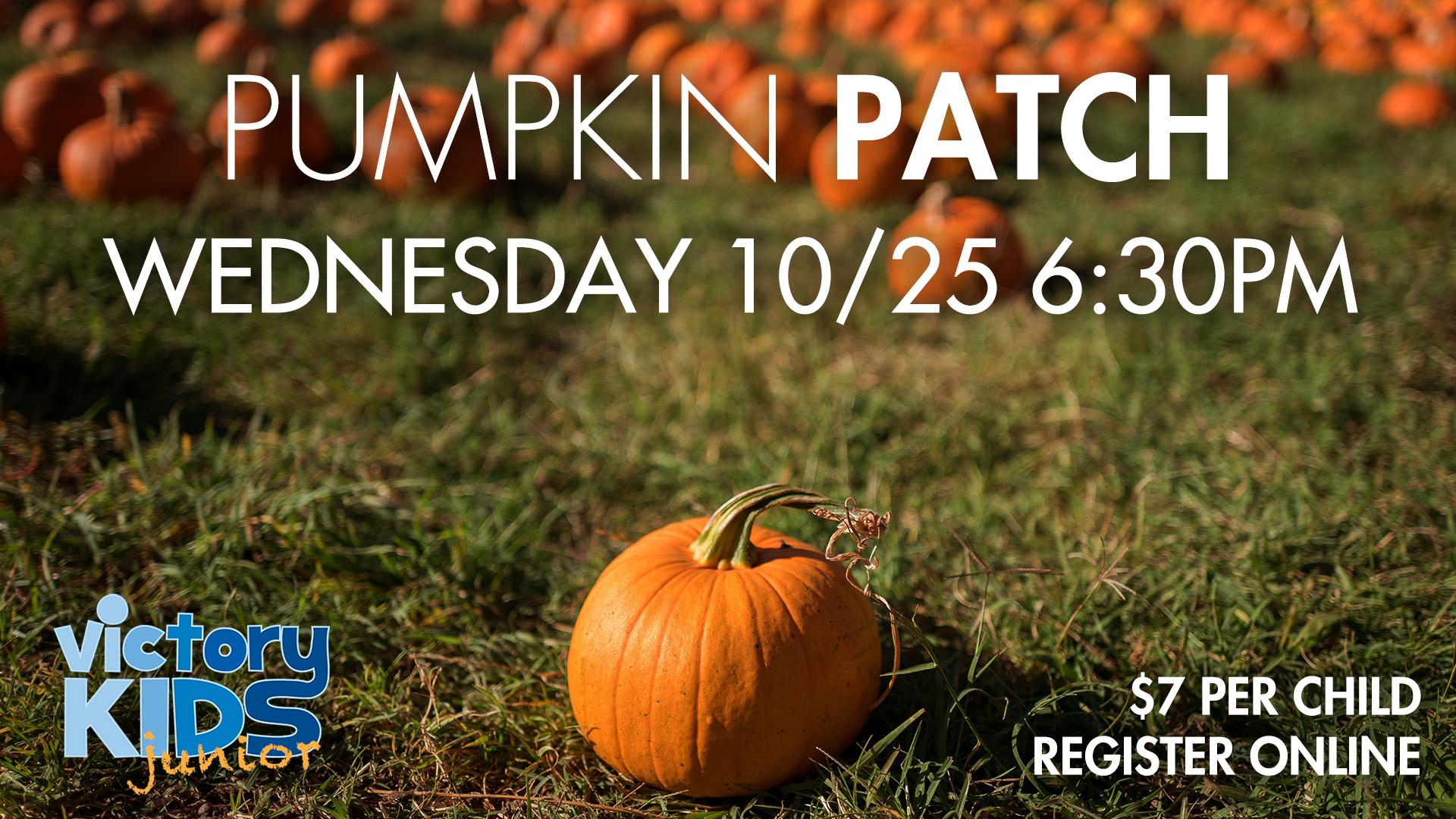 Vkj pumpkin patch