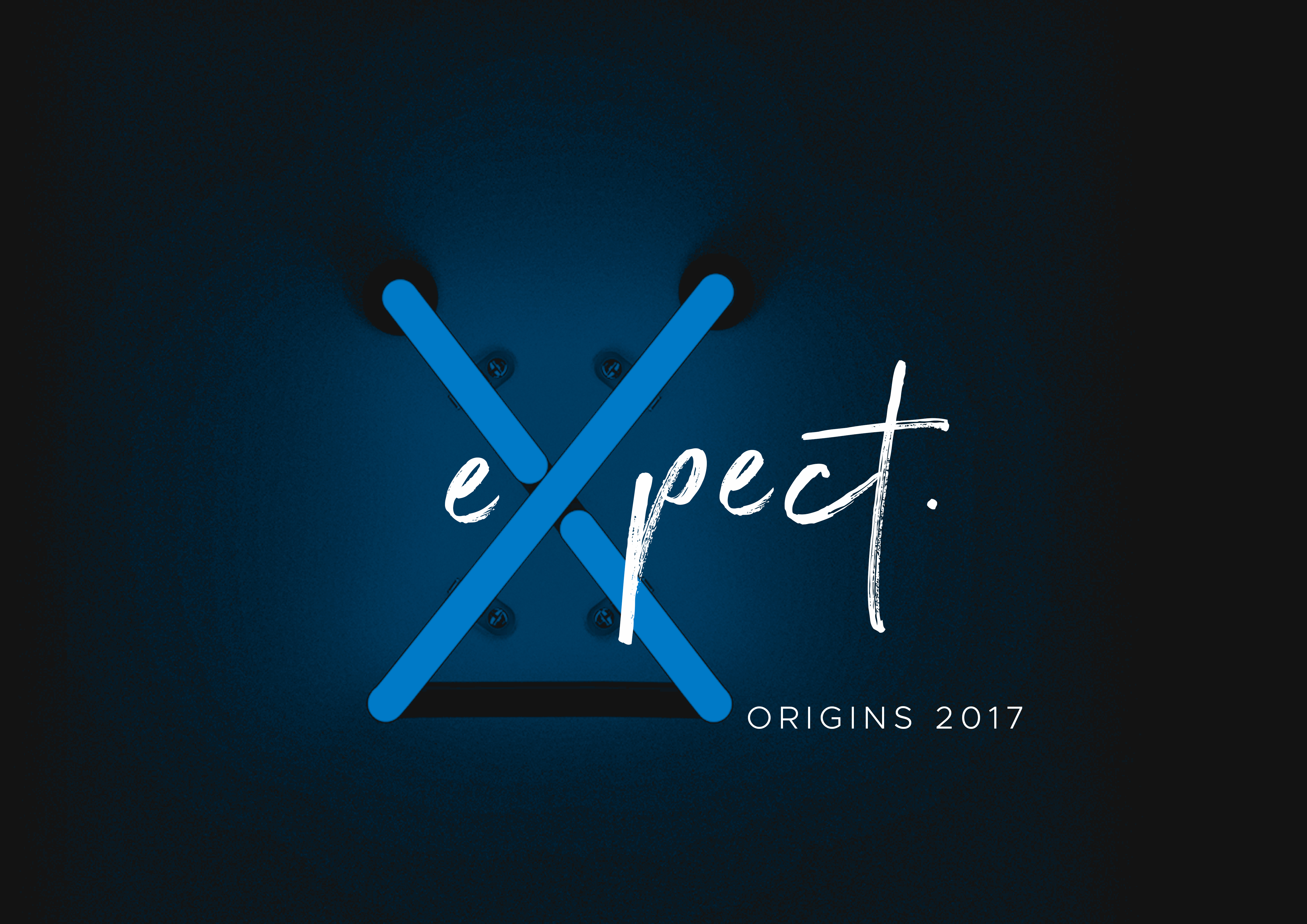 Expect 2017 graphic2