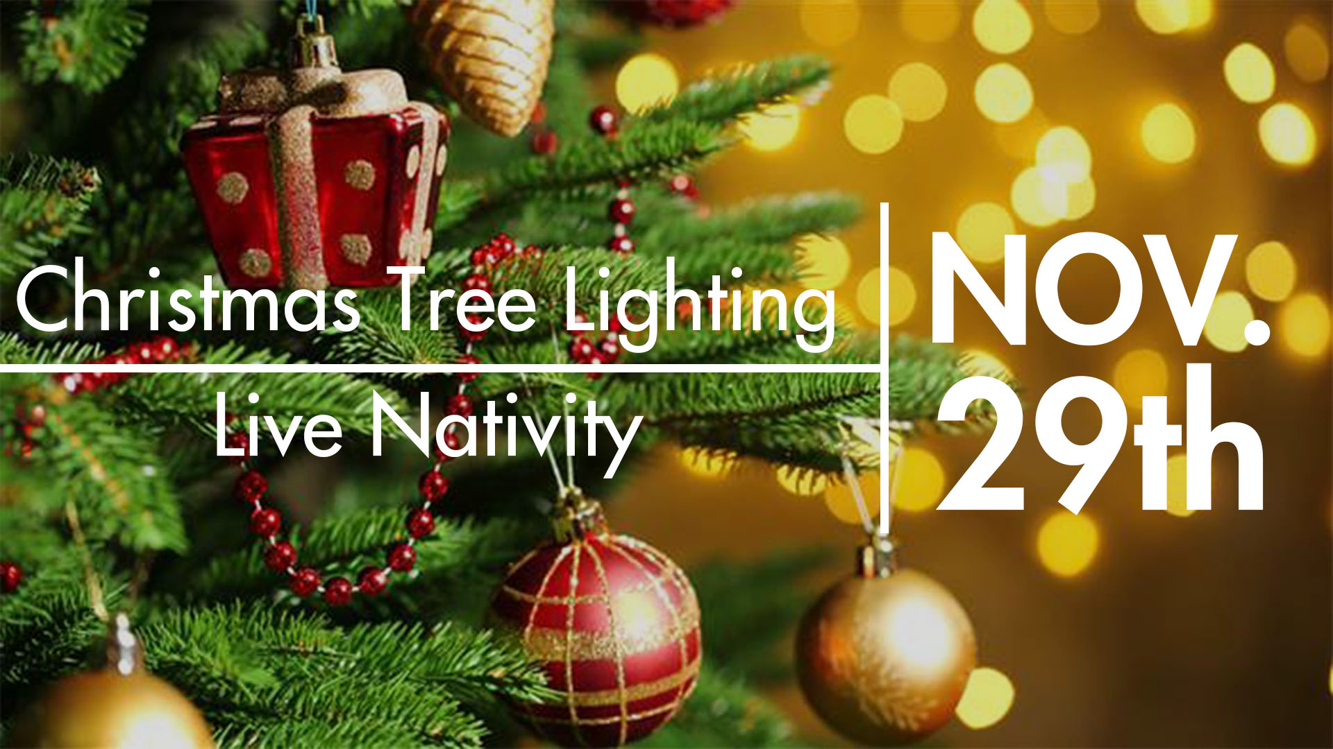 Tree lighting live natavity 2018