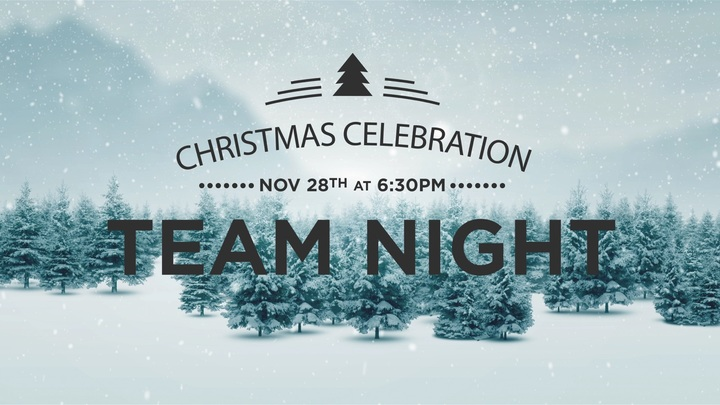 Team Night Christmas Celebration logo image