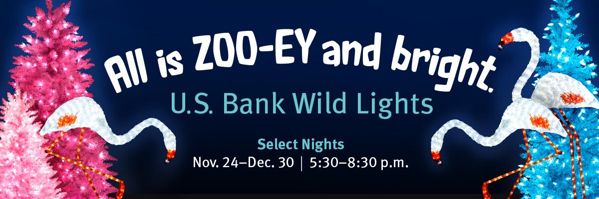Wild lights banners